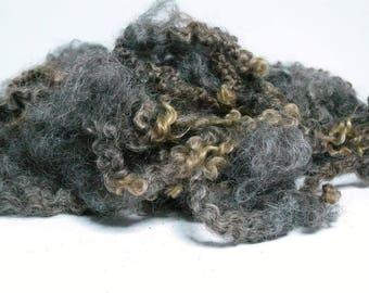 30g washed Leicester Longwool locks, fleece, fibers, wool, doll hair, dwarf beards, lockspinning, tailspinning, felting, spinning