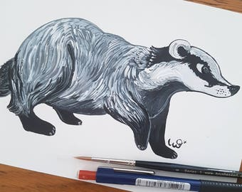 Curious Badger, British Wildlife, Badger A5 Print