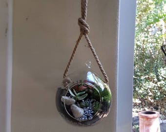 Hanging stylish terrarium
