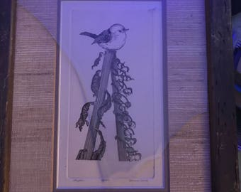 Yvonne Davis bird Drawing