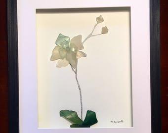 Blue Petal Orchid.....