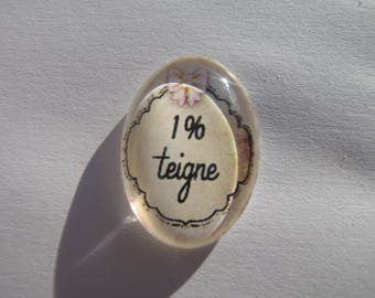 Cabochon 18 X 25 mm oval with a 1% writing funny image ringworm