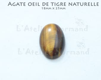 """Cabochon oval Agate """"Eye of Tiger"""" 18mm x 25mm"""