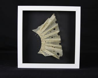 Shell, Paper Art, Burned Drawings, Found Objects,