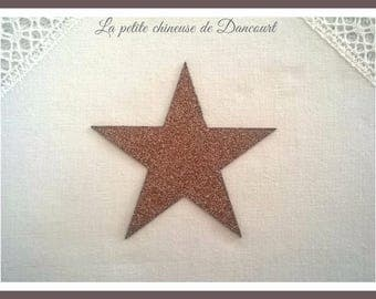 Bronze sequined star patch