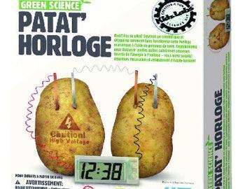 Lab for Kids: potato clock (Green Science)