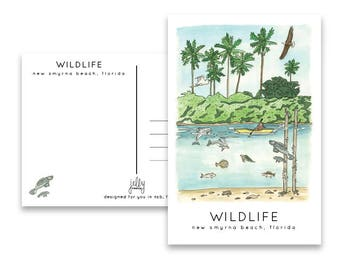 Postcard of New Smyrna Beach, Florida Wildlife