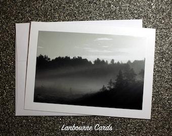 Morning Mist on Ponemah Bog