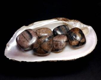 Chiastolite Tumbled Stone