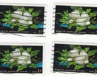 Magnolia 37 Cent Stamps (4). Martin Heade. Used. Off paper. Scott 3872. Great for decoupage, collecting, and any other craft projects.
