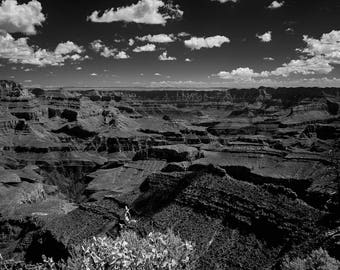 Grand Canyon National Park- South Rim