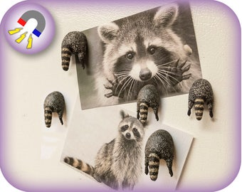 Hand Painted Raccoon Magnet | 3D printed | Custom Orders Available
