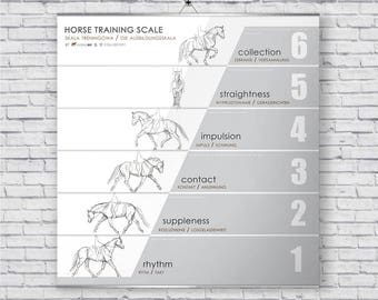 Horse training scale poster