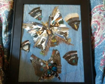 Butterfly feather art