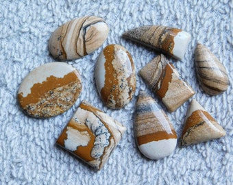 Lot ! picture jasper Excellent cabochons loose gemstone top quality handmade Amazing smooth polish one side flat 99.85cts. 9 Pieces.