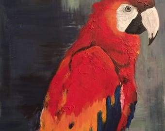 Scarlet Macaw Parrot painting