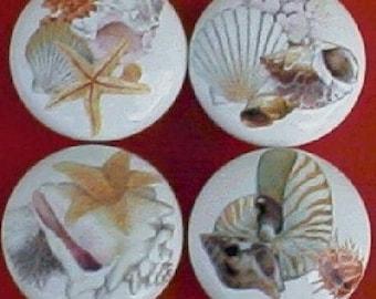 Ceramic Cabinet knobs Sea shells #4 seashell (4) Kitchen hardware pulls