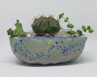 Ceramic planter, plant pot, succulent pot, cactus pot, home decor, office decor, home studio pottery.
