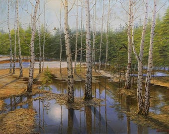 Birch Trees and the Spring Sun