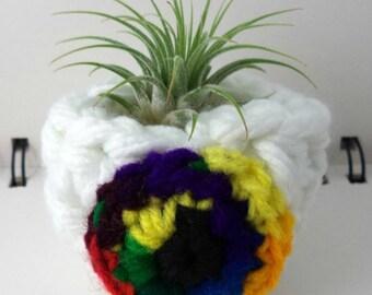 Rainbow Eyeball Air Plant Pot