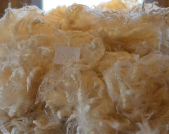 Border Leicester Cross Raw Wool Fleece, 6 ozs