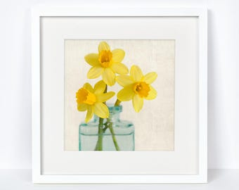 Flower Photograph, Fine Art Photography, Floral Art Print, Botanical Art Print, Flower Photography Print, Yellow Daffodils No. 7