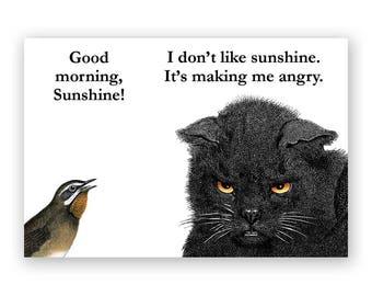 I Don't Like Sunshine Magnet