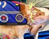 Therapy Dog Vest - Faithful Paws, Houston TX