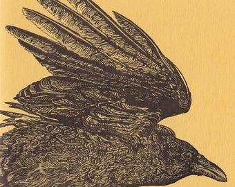 Yellow Corvid Card Letterpress Printed Original Illustration Flying Bird