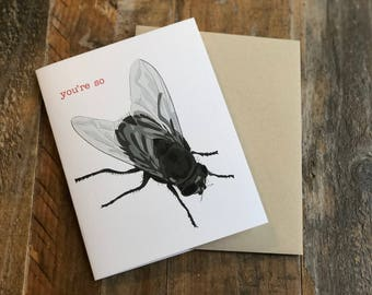 You're so Fly Funny Card