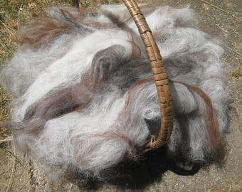 Alpaca Batt Variegated Whole Herd Rough Combed Gray White Brown Blasck Beige 4-Ounces Spinning fiber Needle Felt Mixed Lengths &Texturesres