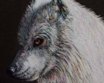 White Wolf Art Note Card