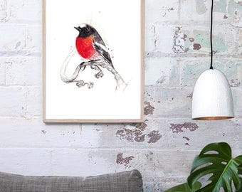 Australian Scarlet Robin A3, A2 & A1 Giclee Art Print Bird Watercolor Illustration