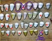 12 cone shells