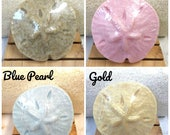 Sand Dollar Soap - shower favors/wedding favors SET of 10 - BULK pricing