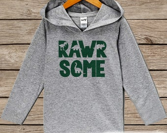 Boys Dinosaur Shirt - Rawrsome Dinosaur Hoodie - Fun Dinosaur Hoodie - Boys Dino Pullover - Kids Awesome Dinosaur Shirt