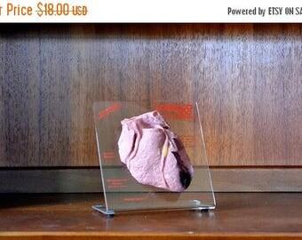 CIJ SALE 25% OFF Sale vintage anatomical model heart pharmaceutical display / medical vintage