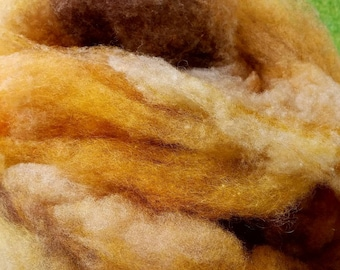 Hickory - Dakota Blends - Shetland wool, plantdyed Teeswater wool, dyed BFL hand-spinning color blend - 4 ounce bag