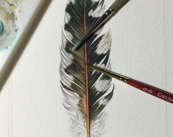 Red shafted flicker feather - Original watercolour