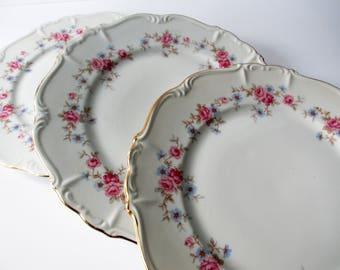 Vintage Dinner Plates Edelstein Florence Pink Blue Floral Set of Three
