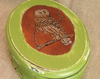 Land of The Free Oval Wood Box with Owl in Linden Green / Keepsake or Trinket Box for Him or Her in Green Ivy