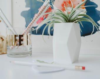 Sherlock - Air Plant/ Mini Succulent Planter