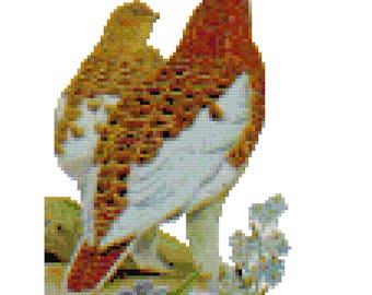 Alaska State Bird Cross Stitch Pattern