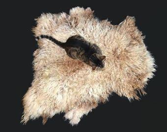 Cruelty Free, Shetland, Cat Bed, Dog Bed, Humane Sheepskin, Felted Fleece, Pet Bed, Pet Lover Gift, Natural Cat Bed, Accent Rug, Mat
