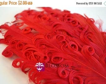 ON SALE 1 Curly Nagorie Feather Pads - Goose Feather Pad - red - DIY Headband Hair Clip Hat Wedding Supplies - Newborn Photo Prop Baby - Chr