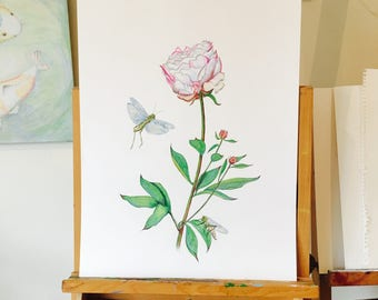 ORIGINAL DRAWING of a Peony with Grasshoppers, Colour Pencil Drawing, Botany, Home Decor, Floral Gift, Beautiful, Subtle Art.