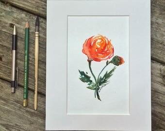 Original Flower Watercolor Painting Matted Art - Ranunculus - 8x10 mat