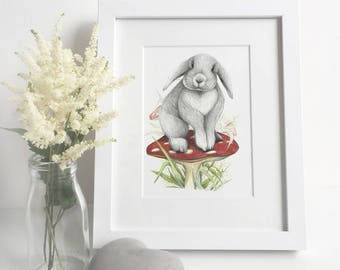 Lop Eared Bunny Toadstool Print A4