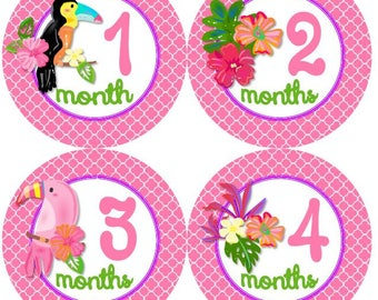 Baby Monthly Milestone Growth Stickers Tropical Birds and Flowers Tropics MS955 Baby Girl Nursery Theme Baby Shower Gift Baby Photo Prop