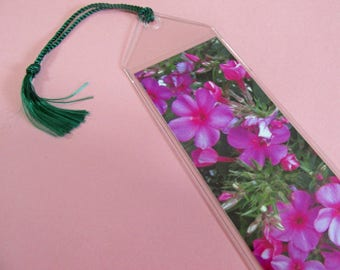 Phlox bookmark print flower floral flowers art